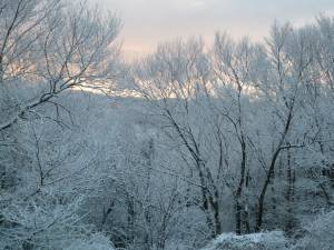 窓からの風景29